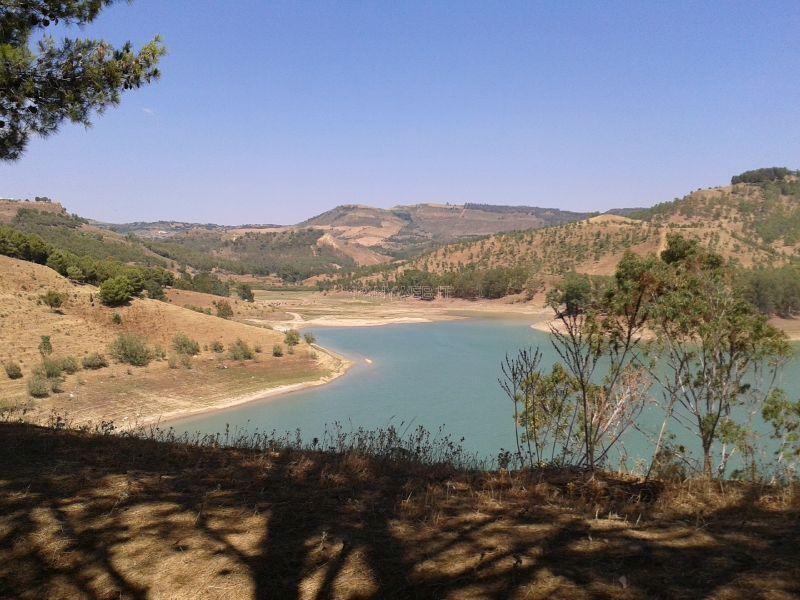 Lago Olivo Piazza Armerina