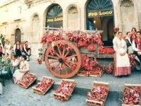 Tradizioni e folclore a Tropea