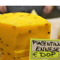 Enogastronomia Sicilia: Piacentinu ennese